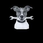 Hund-Bearbeitet23